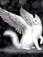 EmpathWithWings at Psychics.com